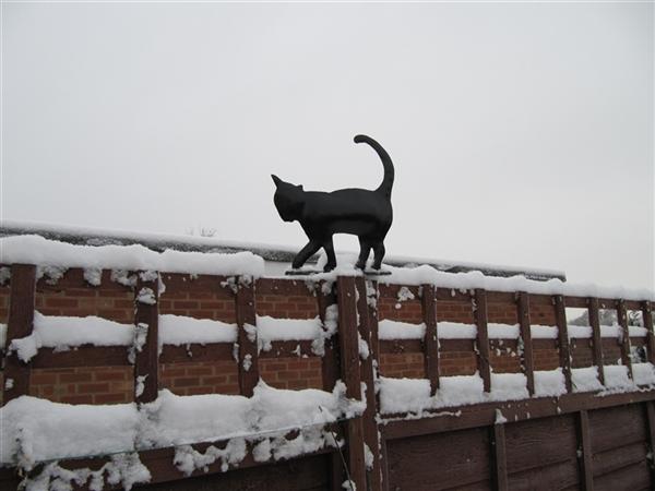 Black cat fence post cap