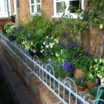 Low country railings for a country cottage front garden hoop and acorn design